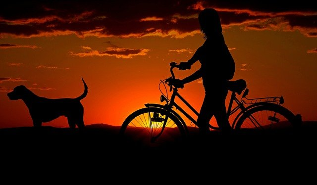 rower spinningowy